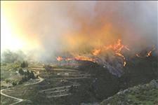 Forest fire between Almuñécar and Nerja