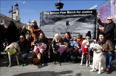 national campaign against cruel treatment of hunting hounds reaches