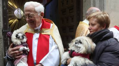 Why is everyone taking their pets to church? A 105-year-old Egyptian has the answer...