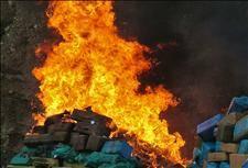 Giant cannabis bonfire in Almería