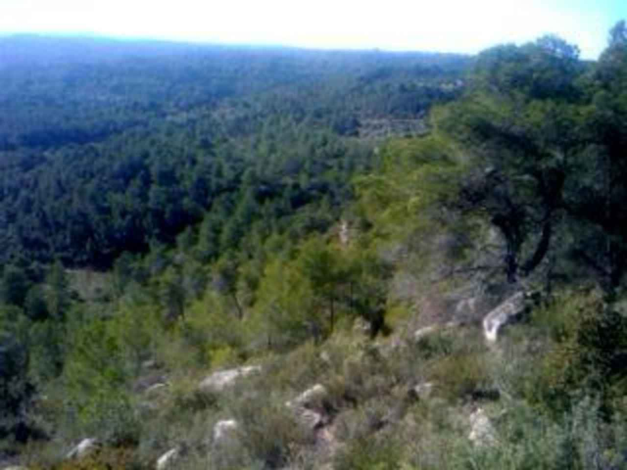 Finca/Country House for sale in Arens de Lledo - € 40,000 (Ref: 1240918)