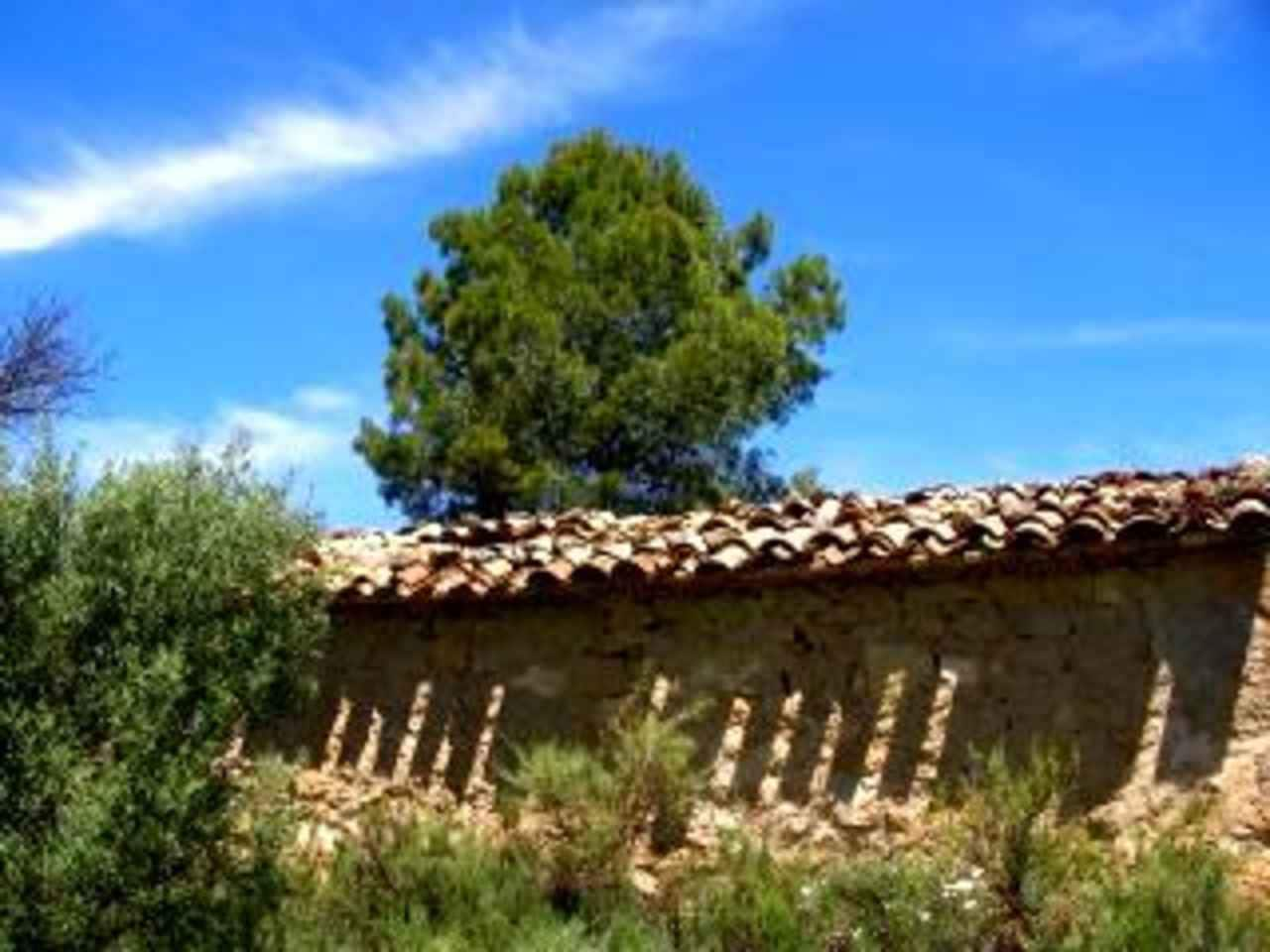 Finca/Country House for sale in Arens de Lledo - € 18,000 (Ref: 1448651)