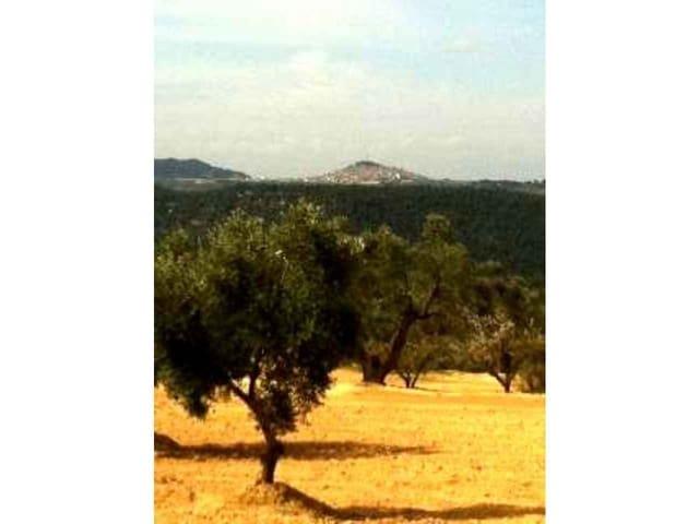 Ubebygd land til salgs i Cretas - € 28 000 (Ref: 3318820)