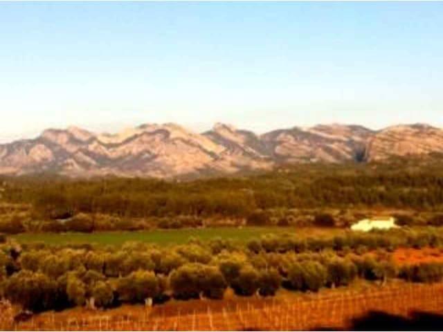 Ubebygd land til salgs i Cretas - € 45 000 (Ref: 3318824)
