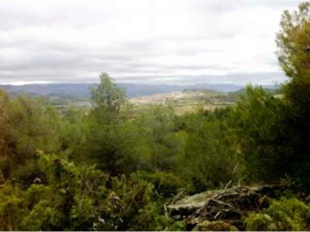 Undeveloped Land for sale in Monroyo - € 25,000 (Ref: 3318830)