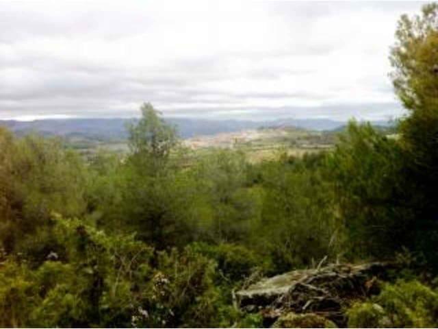 Terre non Aménagée à vendre à Monroyo - 25 000 € (Ref: 3318830)