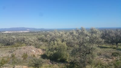 Undeveloped Land for sale in Canet lo Roig - € 33,000 (Ref: 3692468)