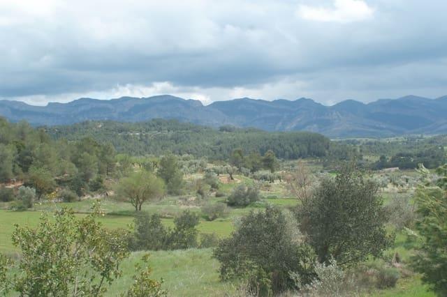 Ubebygd land til salgs i Lledo - € 40 000 (Ref: 4209443)