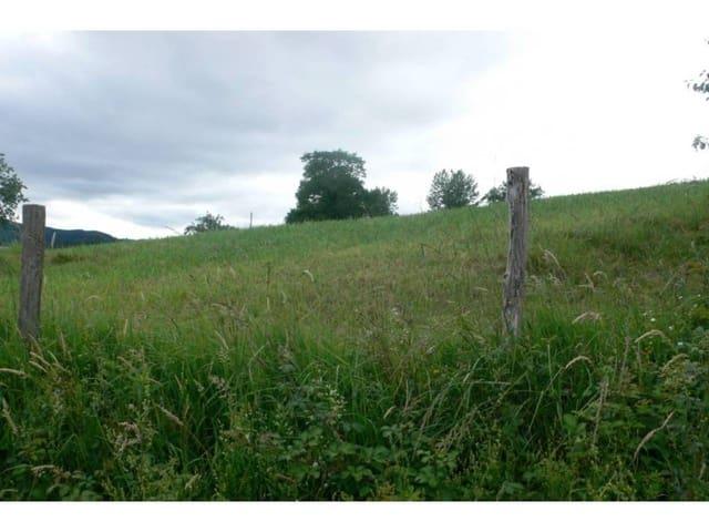 Terre non Aménagée à vendre à Gama - 120 000 € (Ref: 3861401)