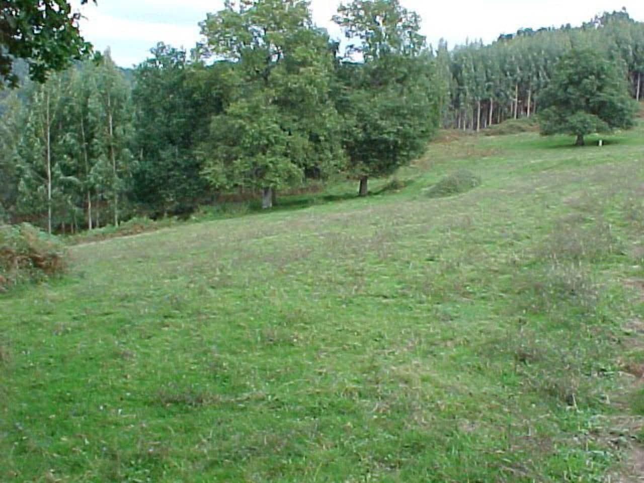 Terreno Não Urbanizado para venda em Arcentales - 86 000 € (Ref: 942832)