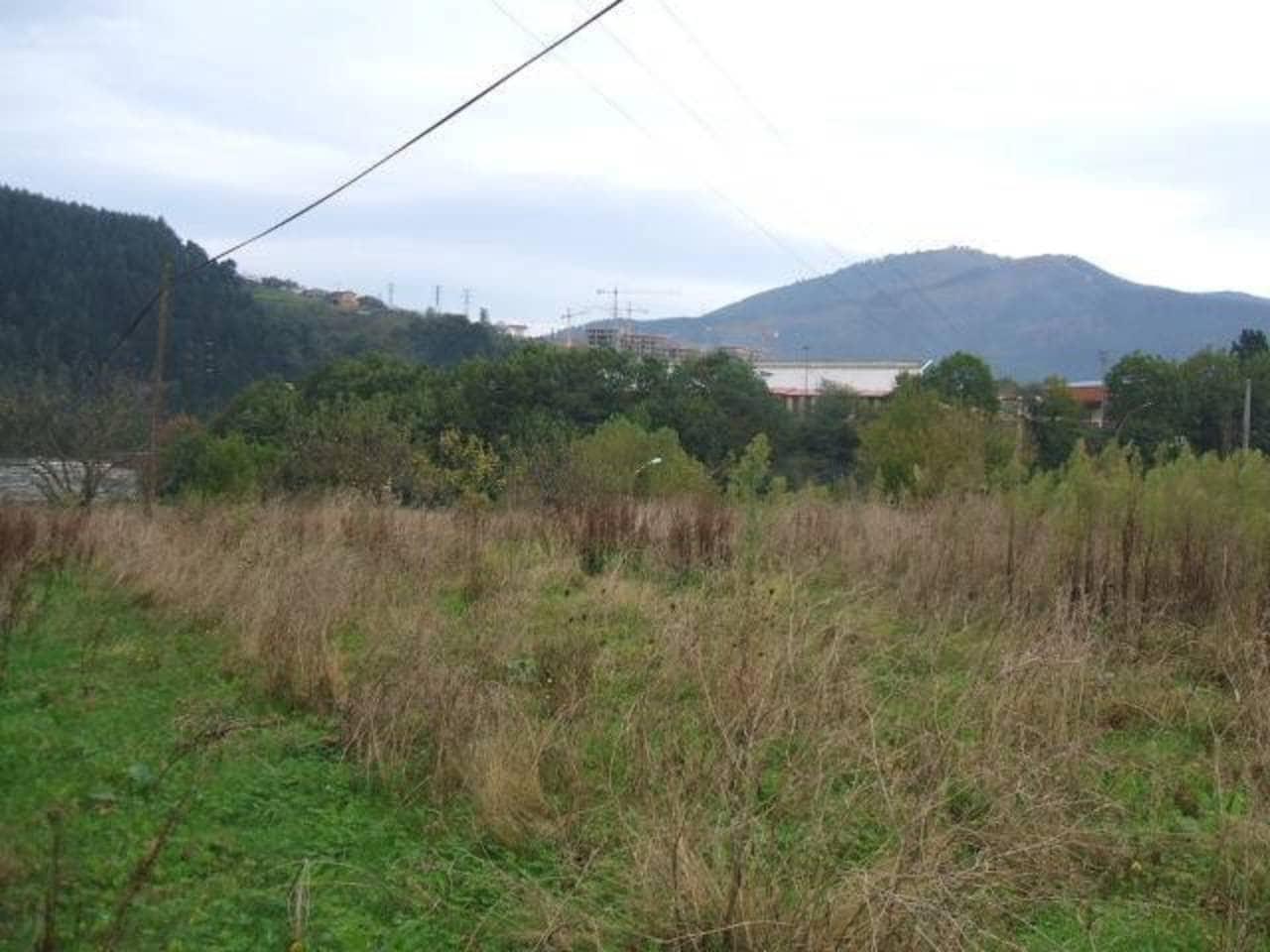 Terreno/Finca Rústica en Carranza en venta - 60.000 € (Ref: 942835)