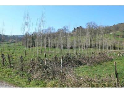 Landgrundstück zu verkaufen in Villaverde de Trucios - 30.000 € (Ref: 942843)