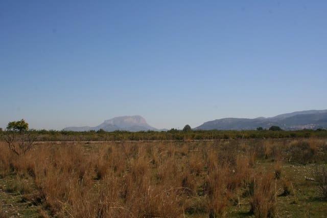 Ubebygd land til salgs i Tormos - € 105 000 (Ref: 5141547)