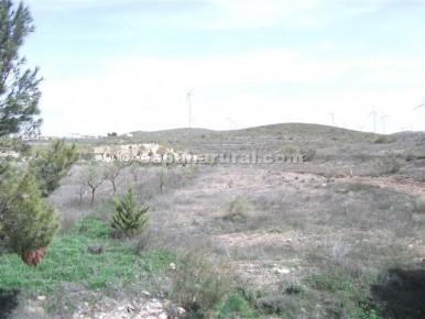 Terreno Não Urbanizado para venda em Seron - 19 000 € (Ref: 3627228)
