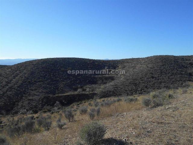 Undeveloped Land for sale in Partaloa - € 12,000 (Ref: 3799743)