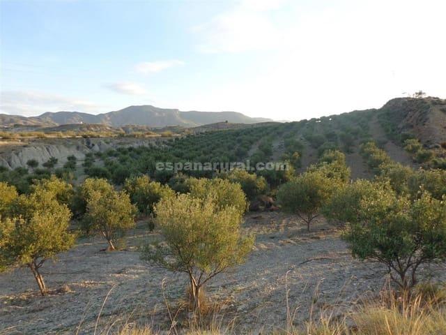 Terreno Não Urbanizado para venda em Purchena - 75 000 € (Ref: 4892461)