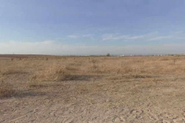 Terreno para Construção para venda em Montequinto - 500 000 € (Ref: 6084952)