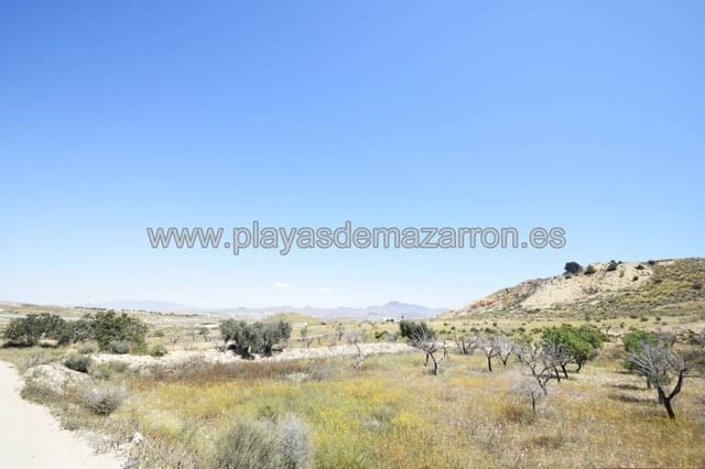 Undeveloped Land for sale in Leiva - € 315,000 (Ref: 4556254)