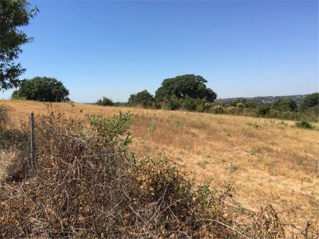Terre non Aménagée à vendre à Santa Eulalia de Roncana - 139 000 € (Ref: 4029525)