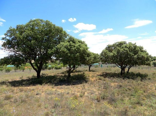 Terrain à Bâtir à vendre à Villar de Canas - 23 900 € (Ref: 3970069)