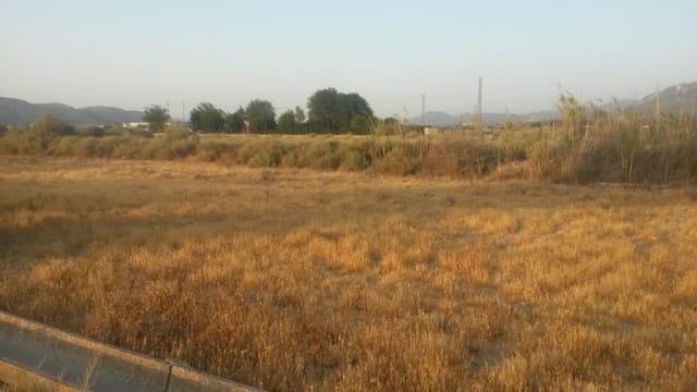 Ubebygd land til salgs i Villena - € 5 700 (Ref: 5799671)