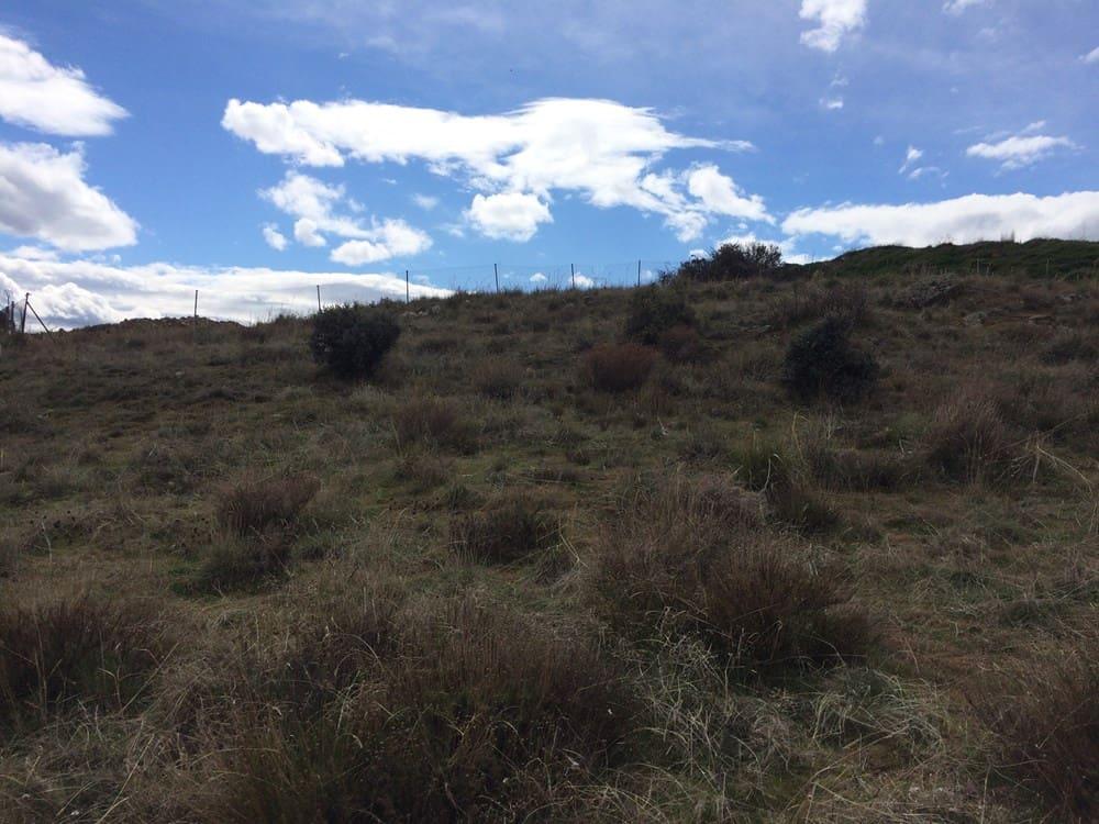 Terreno para Construção para venda em Palazuelos de Eresma - 100 000 € (Ref: 5186822)