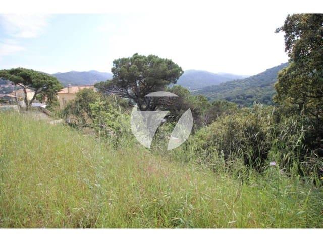 Terre non Aménagée à vendre à Vallromanes - 167 300 € (Ref: 5385178)
