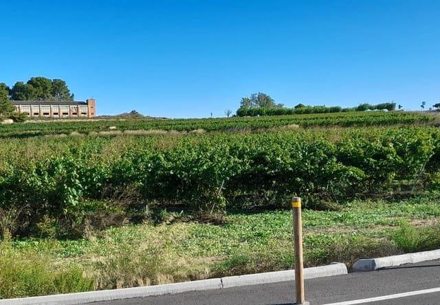 Finca/Hus på landet till salu i Nulles - 55 000 € (Ref: 4163301)