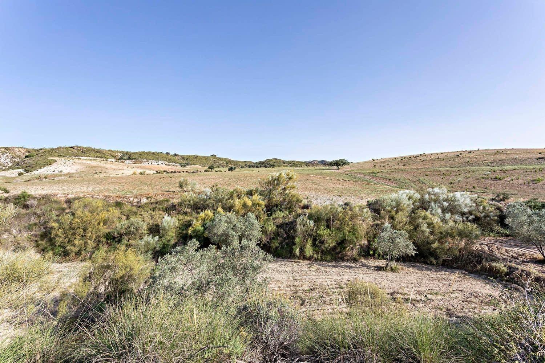 Terreno Non Edificato in vendita in Sorbas - 229.900 € (Rif: 6129794)