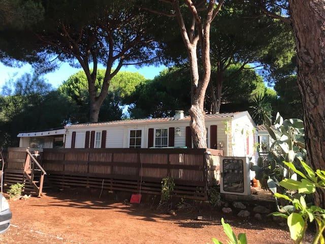 2 soveværelse Mobilhome til salg i Cabopino - € 38.281 (Ref: 4190857)