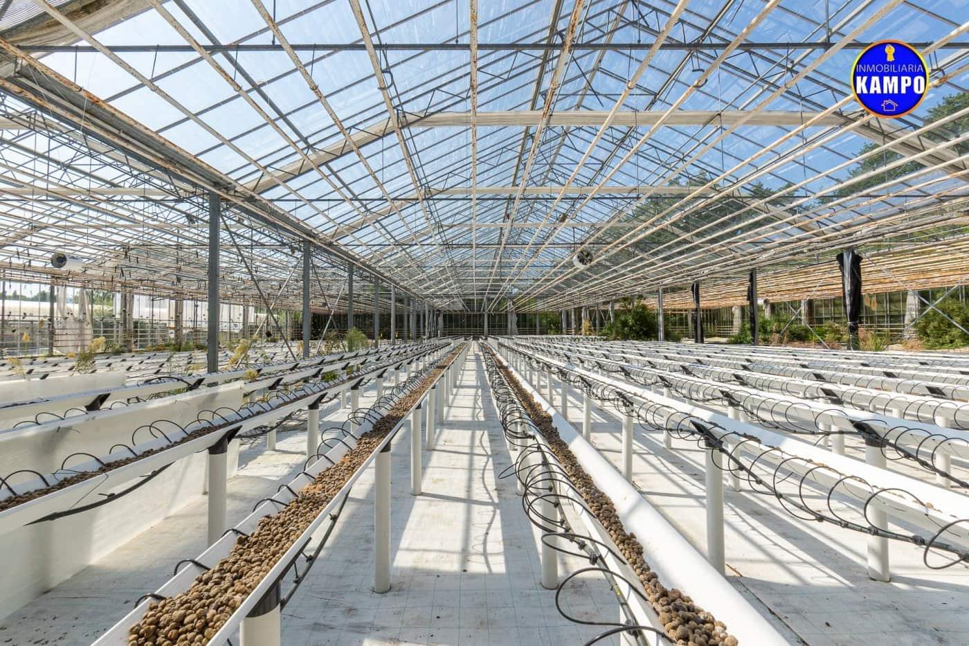 Teren niezagospodarowany na sprzedaż w Hondarribia - 450 000 € (Ref: 6303916)