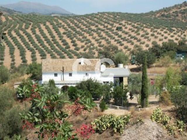Ref:Cortijo Banderu Finca/Country House For Sale in Zagra