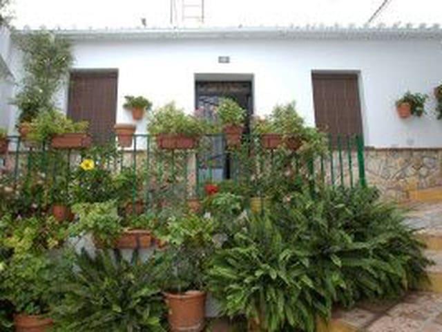 Ref:Casa Macetas Townhouse For Sale in Torrox