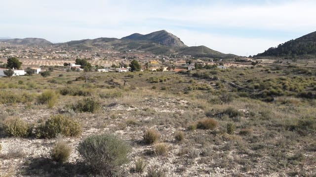 Undeveloped Land for sale in Hondon de los Frailes - € 22,000 (Ref: 5010583)