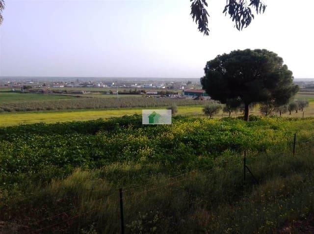 Ubebygd land til leie i Montijo - € 3 600 (Ref: 5147313)