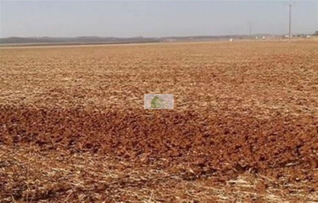 Ubebygd land til salgs i Montijo - € 69 000 (Ref: 5311272)