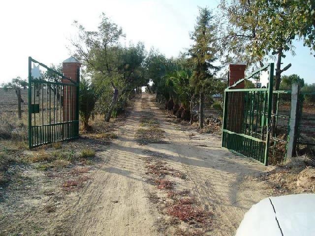 Teren niezagospodarowany na sprzedaż w Montijo - 100 000 € (Ref: 5641827)