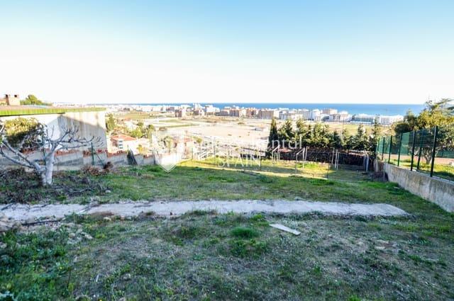 Terre non Aménagée à vendre à Santa Susanna - 153 000 € (Ref: 5055139)