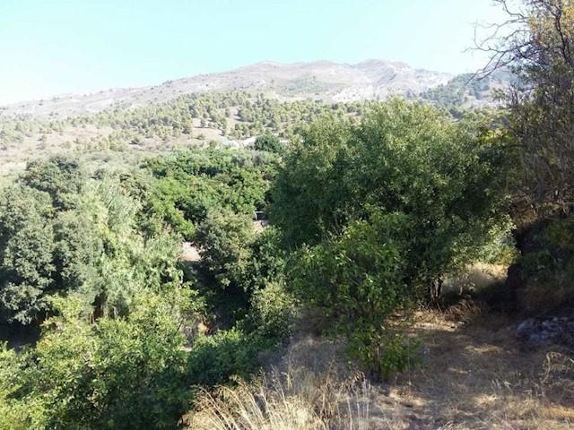 Terre non Aménagée à vendre à Canillas de Aceituno - 26 000 € (Ref: 3241606)