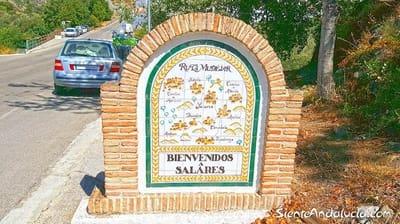 Terrain à Bâtir à vendre à Salares - 26 000 € (Ref: 4101736)