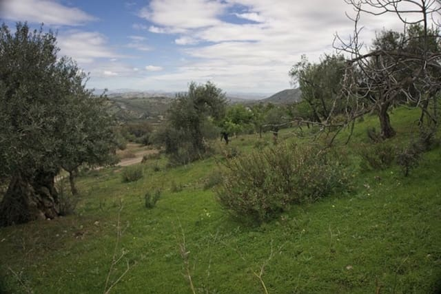 Undeveloped Land for sale in Guaro (Coin) - € 35,000 (Ref: 4501484)