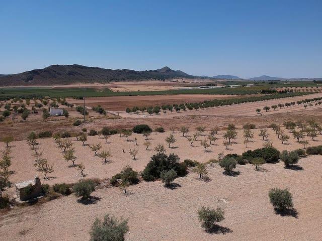 Landgrundstück zu verkaufen in Caudete - 49.995 € (Ref: 1795919)
