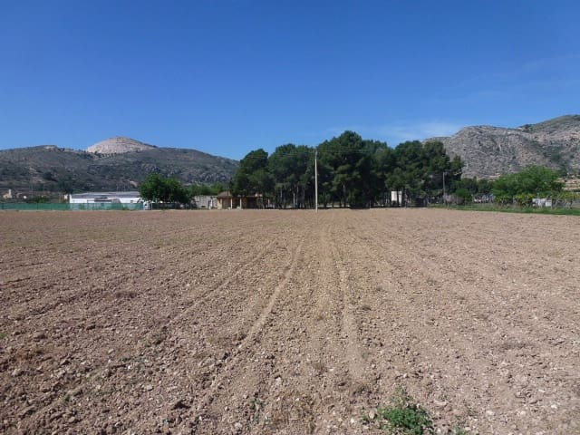 Undeveloped Land for sale in Aspe - € 114,995 (Ref: 4610848)