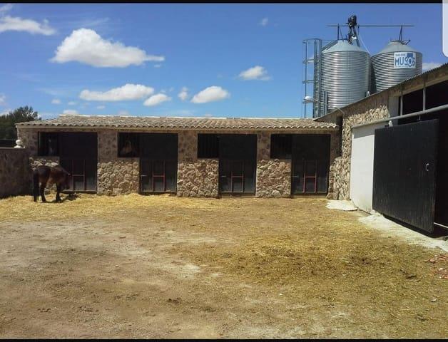 Gewerbe zu verkaufen in Yecla - 225.000 € (Ref: 5034268)