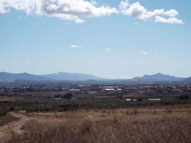 Undeveloped Land for sale in Caudete - € 24,000 (Ref: 5654499)