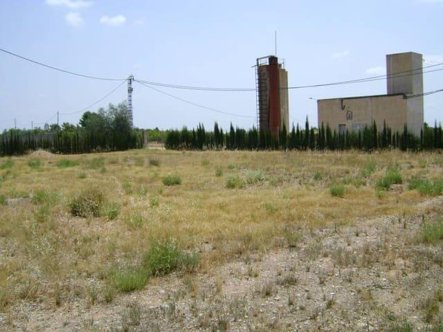 Byggetomt til leie i Crevillente / Crevillent - € 150 (Ref: 3840292)