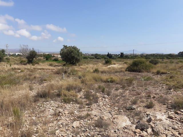Terreno/Finca Rústica en Arenales del Sol en venta - 35.000 € (Ref: 5361193)
