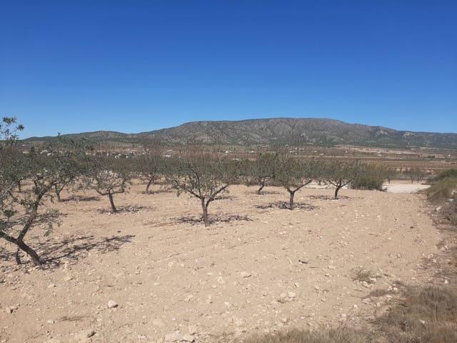Terreno para Construção para venda em Lel - 12 000 € (Ref: 6197011)