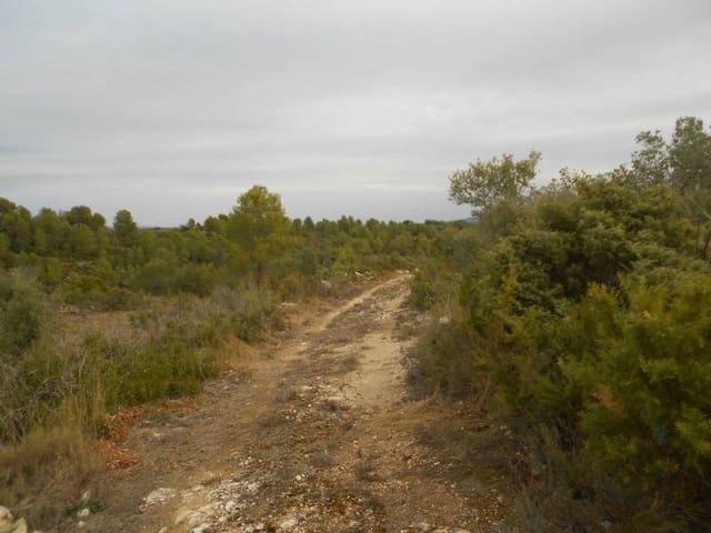 Terre non Aménagée à vendre à Enguera - 30 000 € (Ref: 3139270)