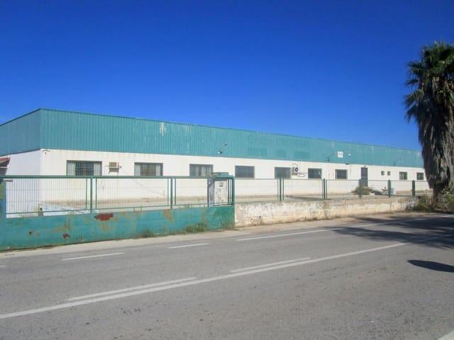 Local Comercial en Moixent en venta - 862.000 € (Ref: 5048466)